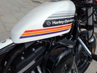 venta_moto_ocasion_harley_davidson_forty_eight__12
